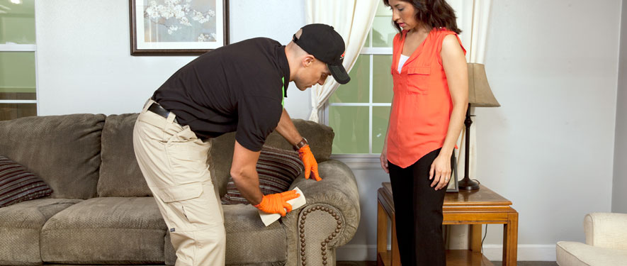 Hermantown, MN carpet upholstery cleaning